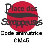 http://i14.servimg.com/u/f14/09/04/06/88/logocm10.jpg