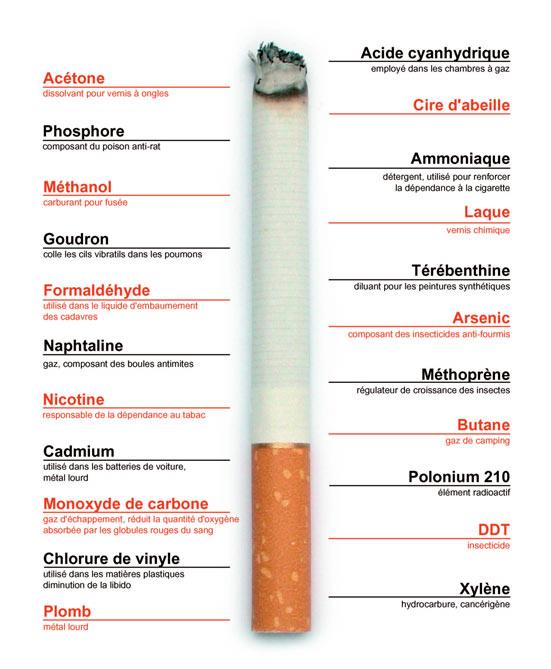 cigare ou cigarette le plus nocif